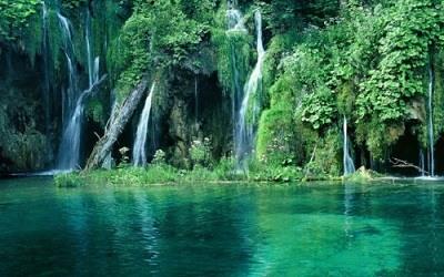 El Parque Nacional Cuc Phuong Vietnam