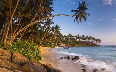 La playa de Mirissa Sri Lanka