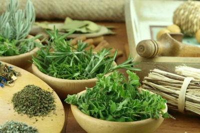 Plantas para la sinusitis