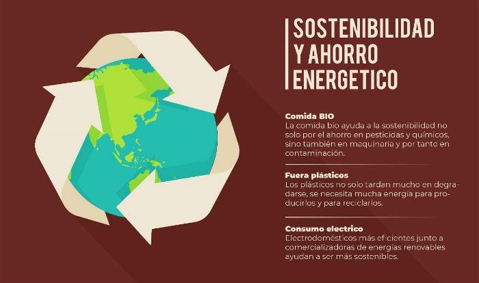 Infografia sostenibilidad y ahorro energetico
