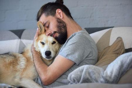 Cómo crear un vínculo emocional con tu mascota