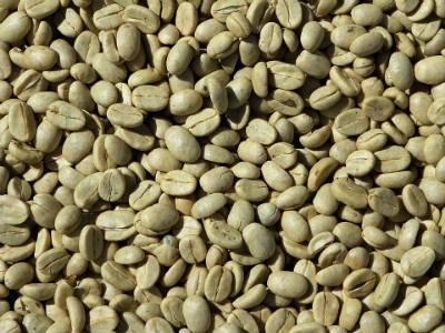 Café verde la revolución más natural